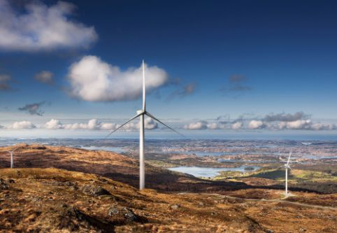 Windpark-Investments mit Pangaea Life