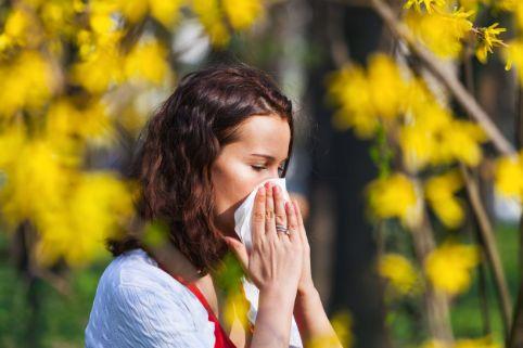 Diebayerische News Hilfe Bei Heuschnupfen Und Anderen Allergien