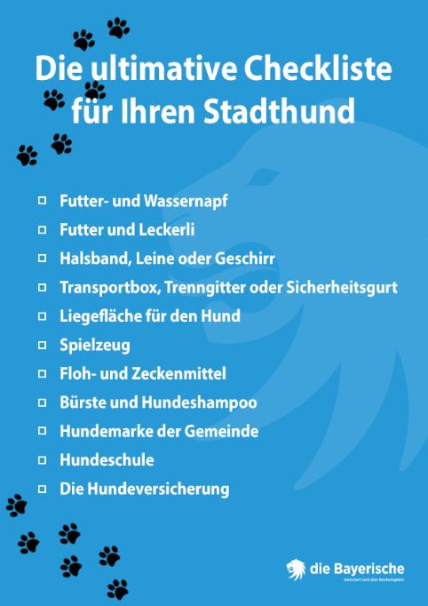 Die ultimative Checkliste für Ihren Stadthund