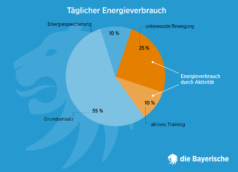 Diebayerische Ratgeber Fit Taeglicher Energieverbrauch