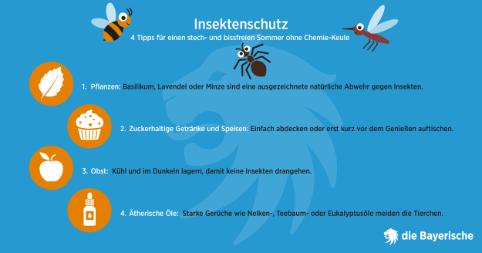 Diebayerische Ratgeber Grafik Insektenschutz