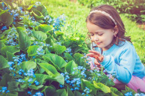 Kinder vor giftigen Pflanzen richtig schützen