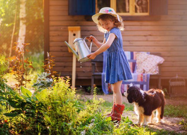 Diebayerische Ratgeber Artenschutz Hausbau