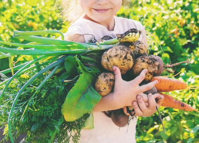 Diebayerische Ratgeber Clean Eating Fuer Kinder
