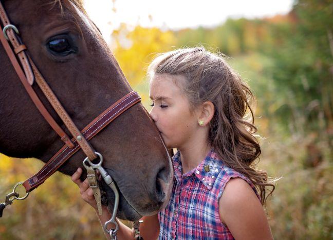 Diebayerische Ratgeber Pferde Tipps