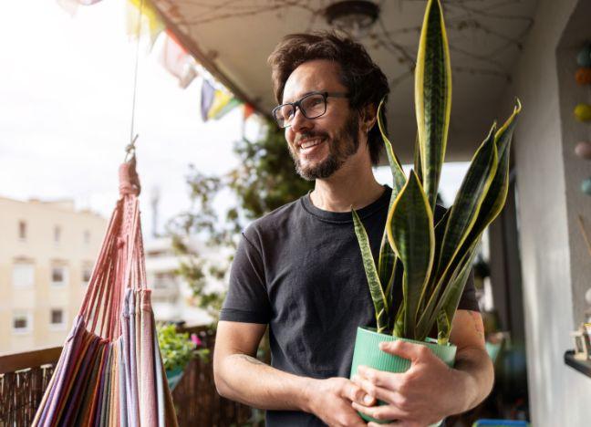 Diebayerische Ratgeber Urban Gardening