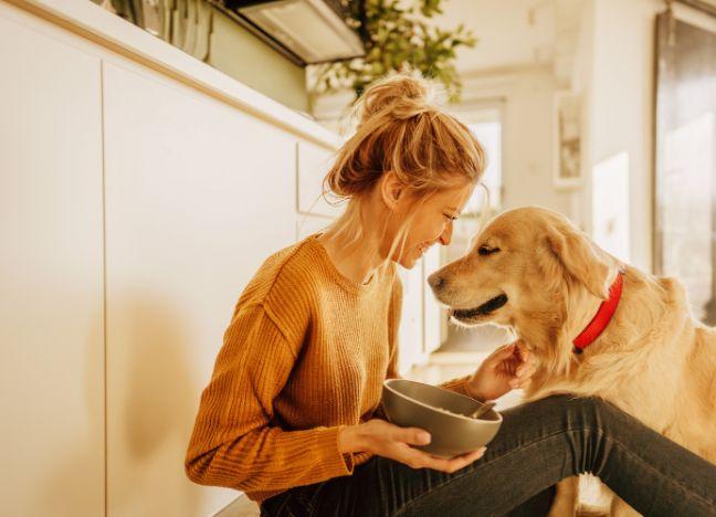 Die Bayerische Hunde-OP-Versicherung