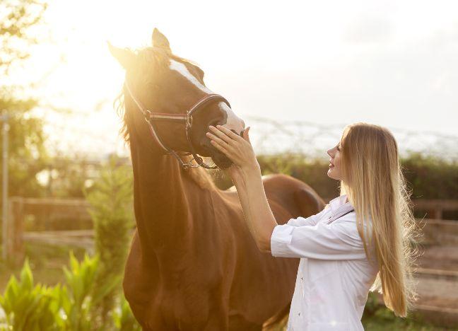 Die Bayerische Pferde-OP-Versicherung
