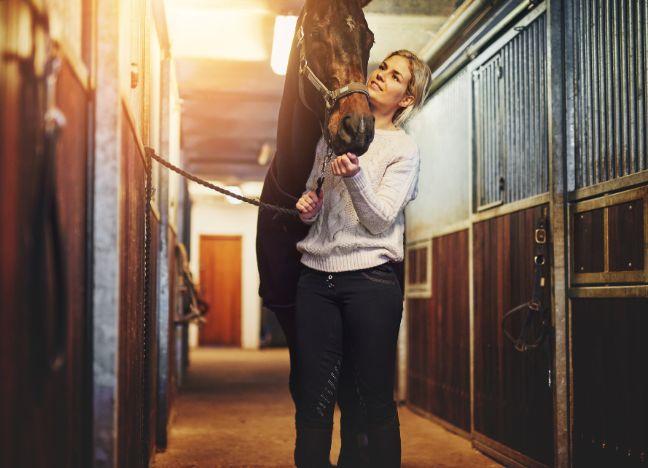 Die Bayerische Pferdehaftpflichtversicherung