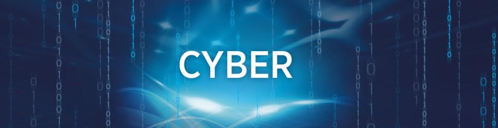 cyber multi risk die cyber versicherung der bayerischen. Black Bedroom Furniture Sets. Home Design Ideas